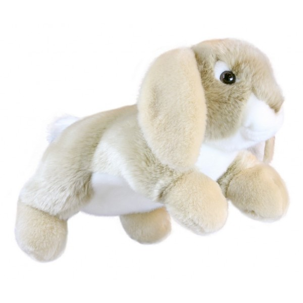 Rabbit Lop-Eared - Full Bodied