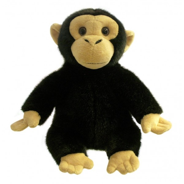Chimp - Full Bodied