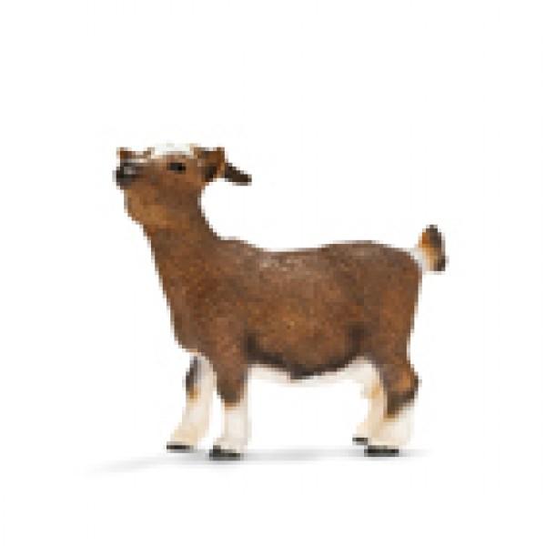 Dwarf Goat - Schleich
