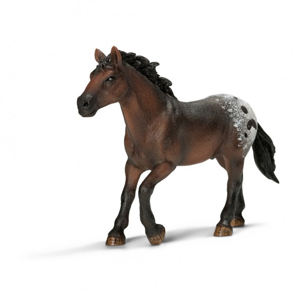 Appaloosa Stallion - Schleich