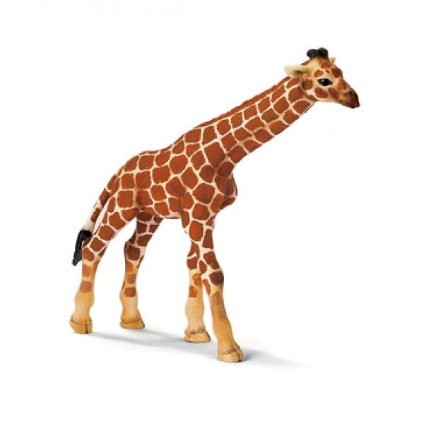 Giraffe Calf - Schleich