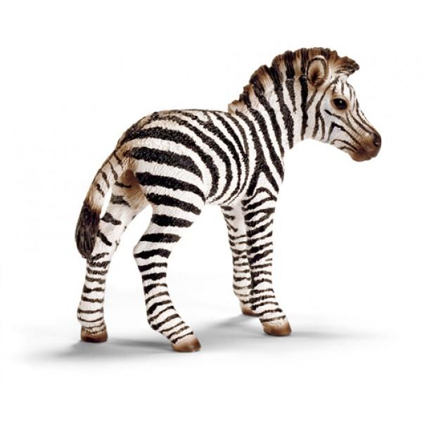 Zebra Foal - Schleich