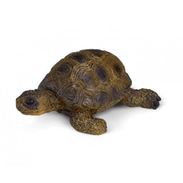 Tortoise - Schleich