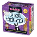 1st Animals Preschool - Brainbox
