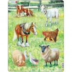 Domestic Animals - 34 Piece
